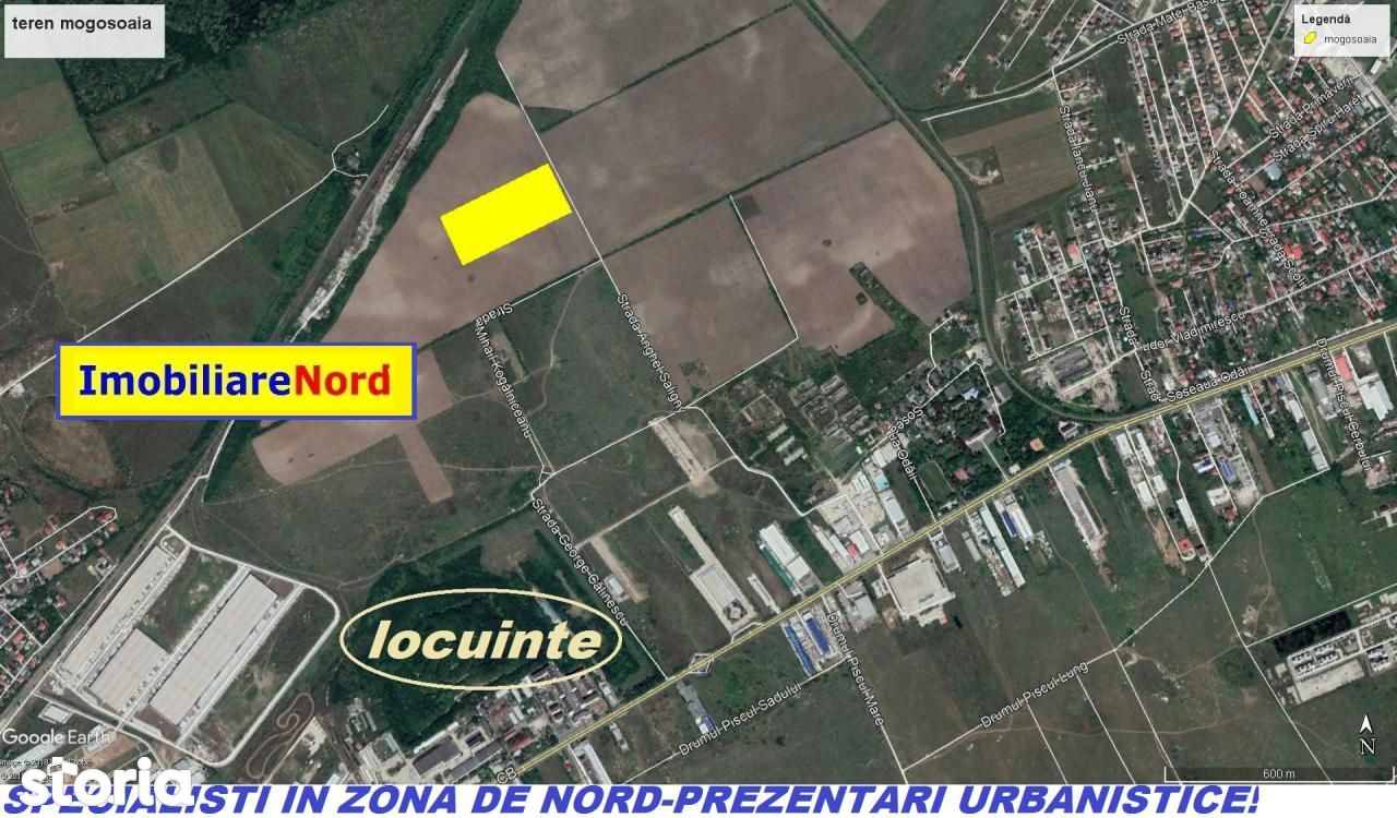 Teren de la 3000-1 ha-5ha, Mogosoaia, acces din Sos. Odai-Centura Nord