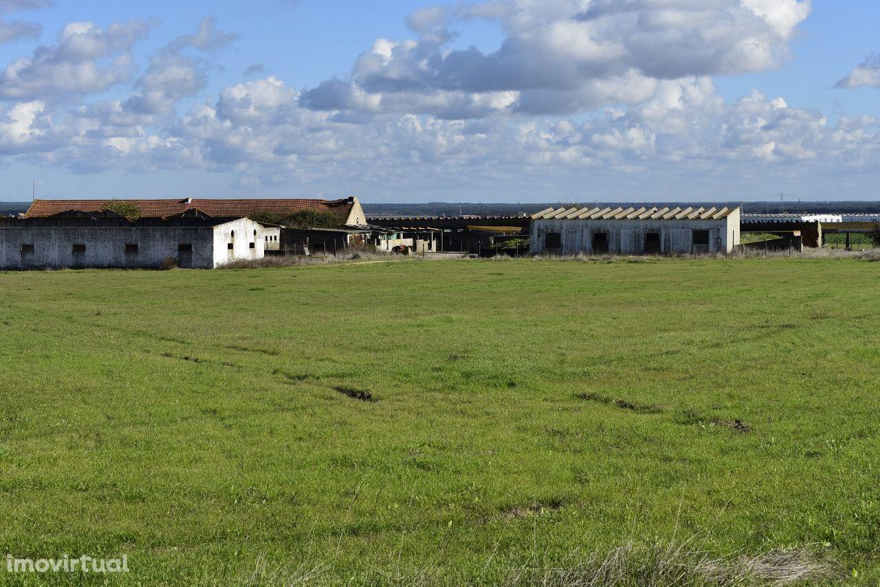 Terreno para comprar, Estrada Nacional 4, Atalaia e Alto Estanqueiro-Jardia - Foto 9