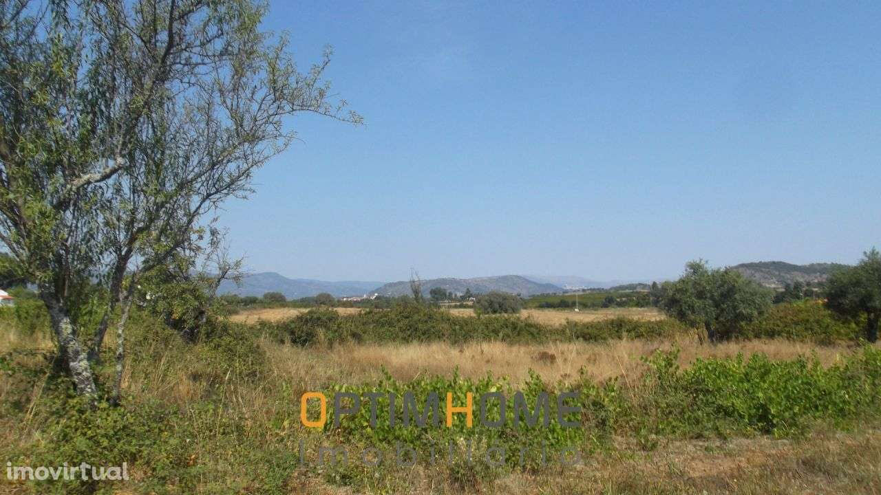 Quintas e herdades para comprar, Caria, Belmonte, Castelo Branco - Foto 21