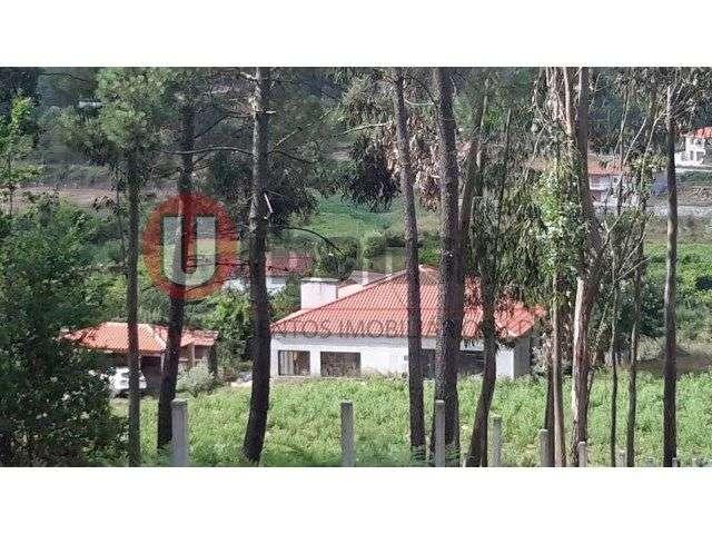 Quintas e herdades para comprar, Cedofeita, Santo Ildefonso, Sé, Miragaia, São Nicolau e Vitória, Porto - Foto 14