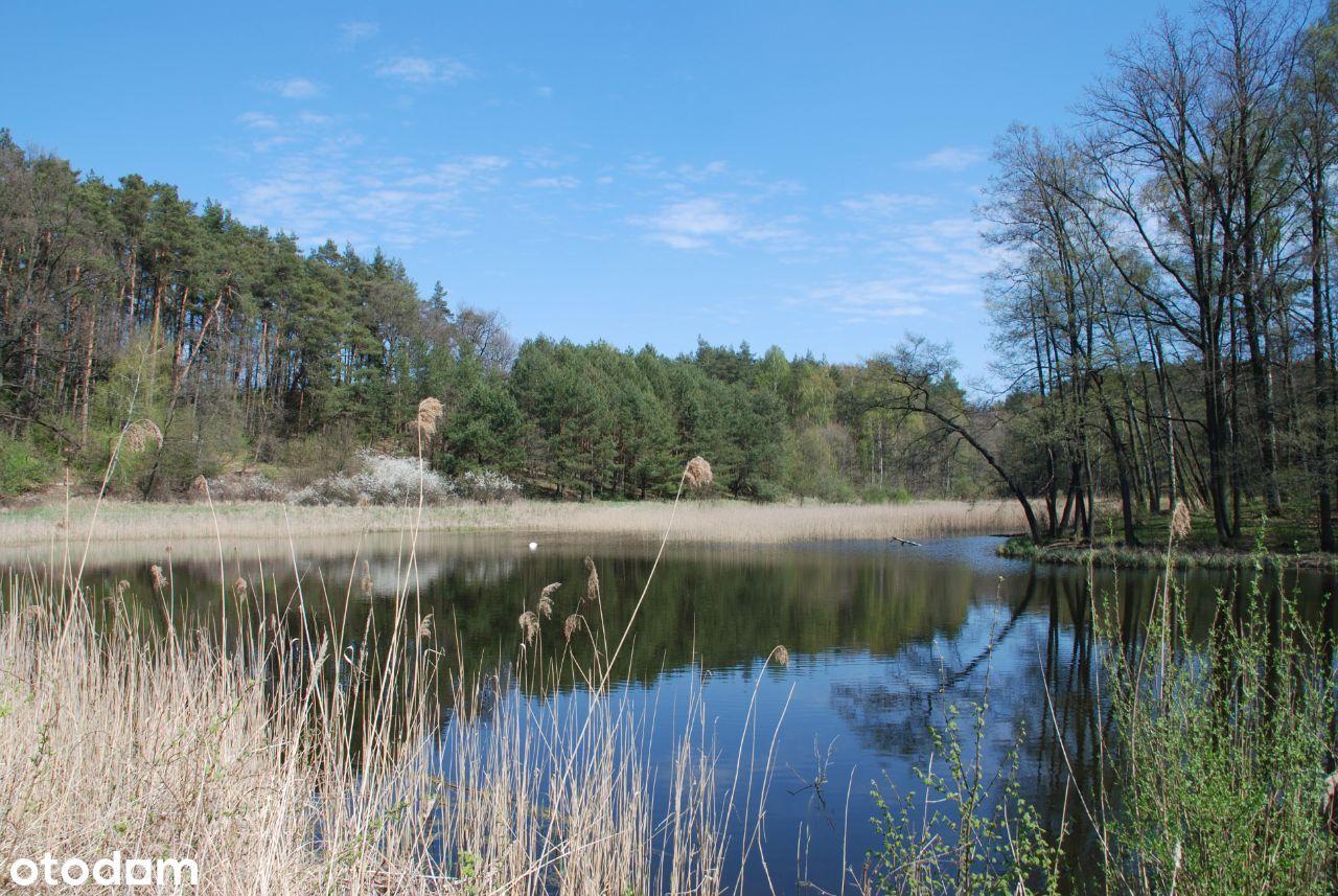 Bajkowe siedlisko 40 ha z jeziorkiem, stawem