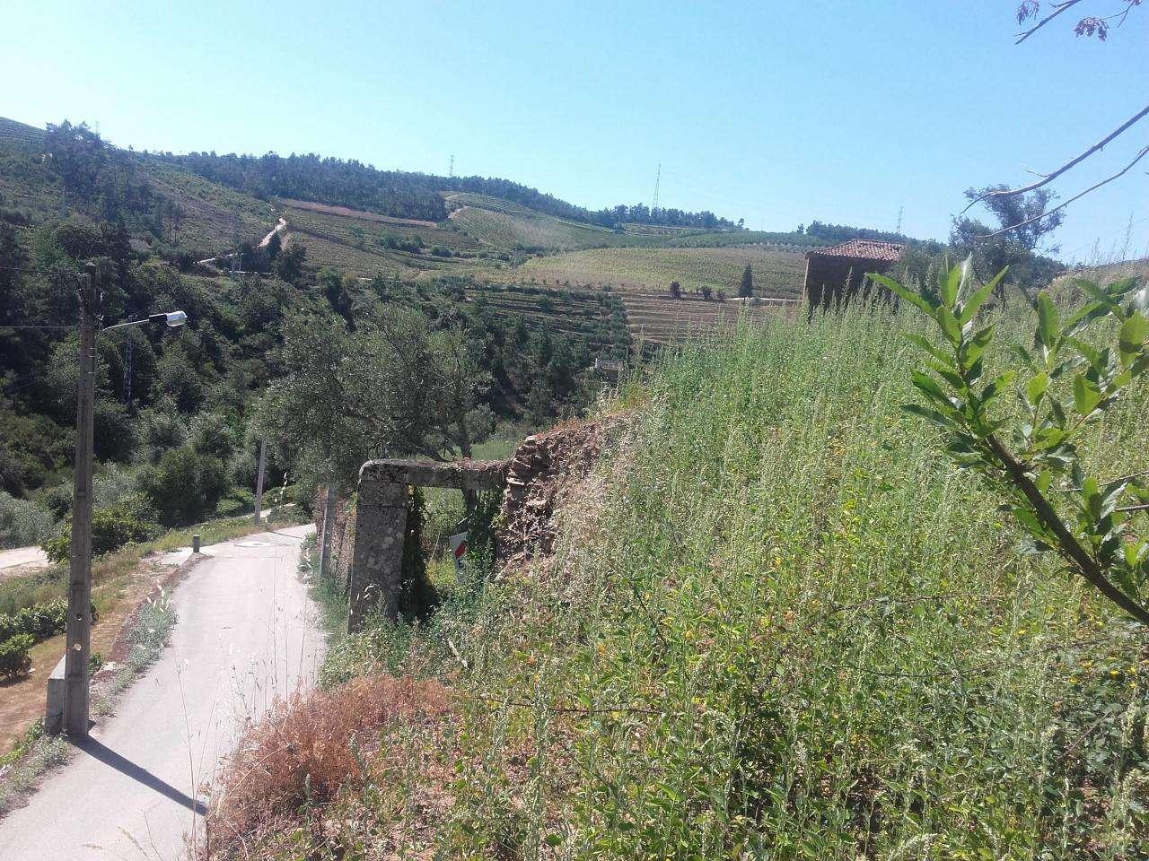 Quintas e herdades para comprar, Armamar - Foto 16