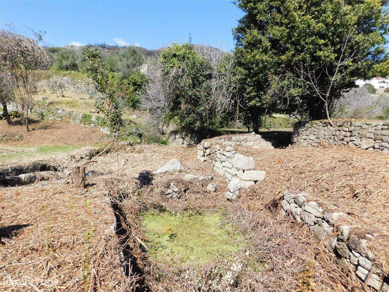 Terreno para comprar, Alpedrinha, Castelo Branco - Foto 5
