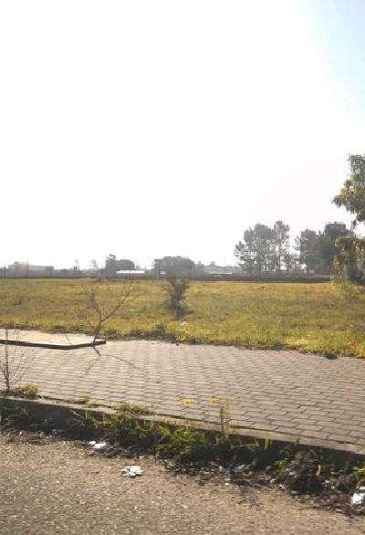 Terreno para comprar, Salvaterra de Magos e Foros de Salvaterra, Santarém - Foto 11