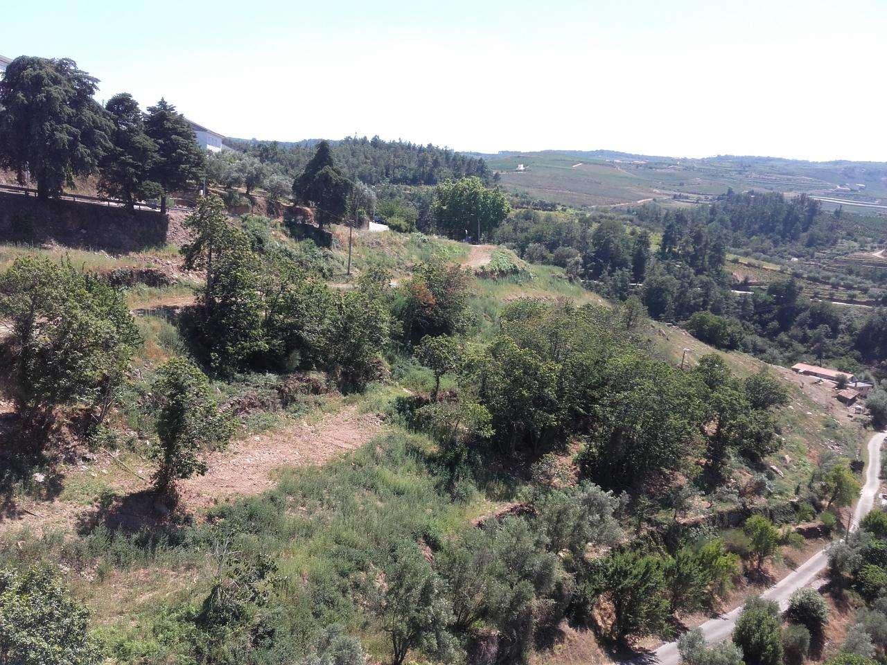 Quintas e herdades para comprar, Armamar - Foto 11
