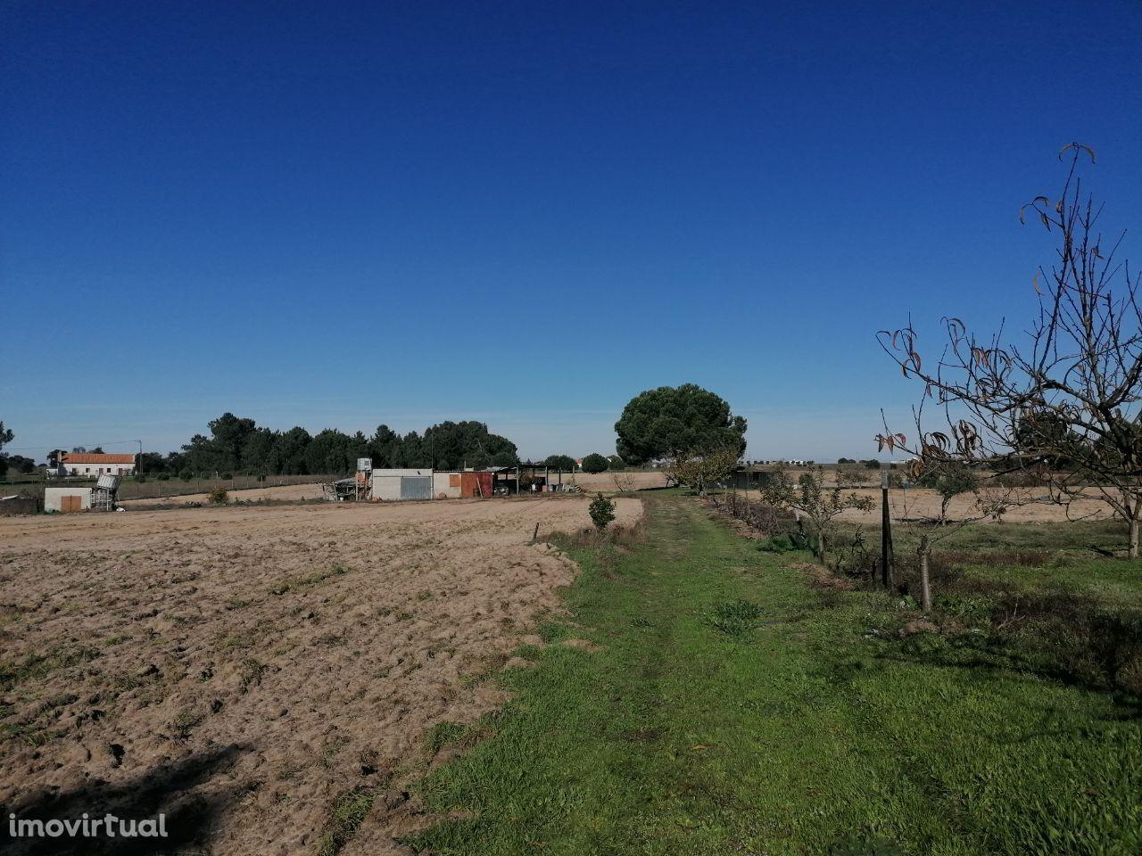 Terreno nas Faias Pegões Montijo