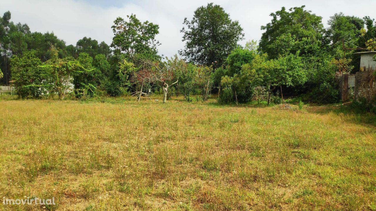 Terreno para construção em Rendufe, Amares