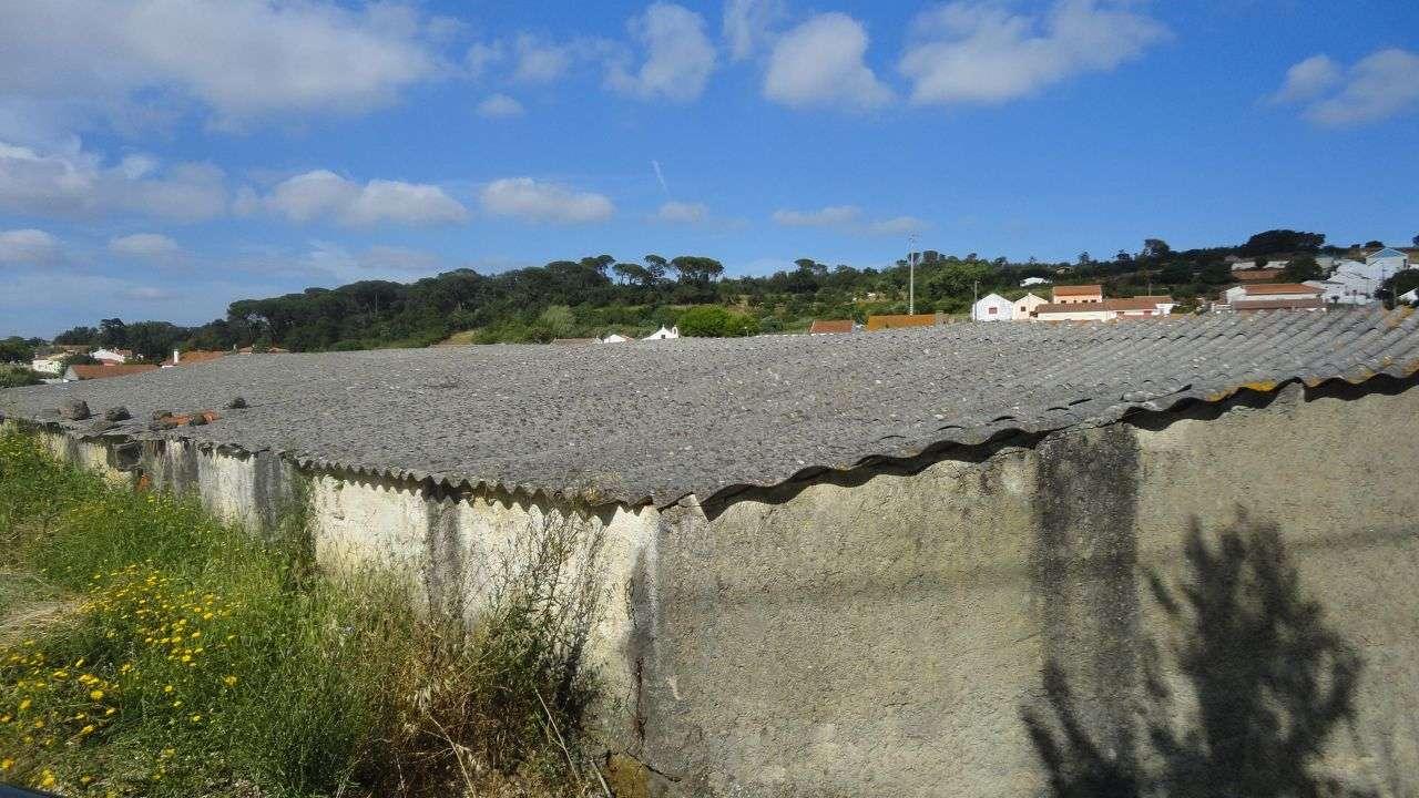 Quintas e herdades para comprar, Arruda dos Vinhos - Foto 9