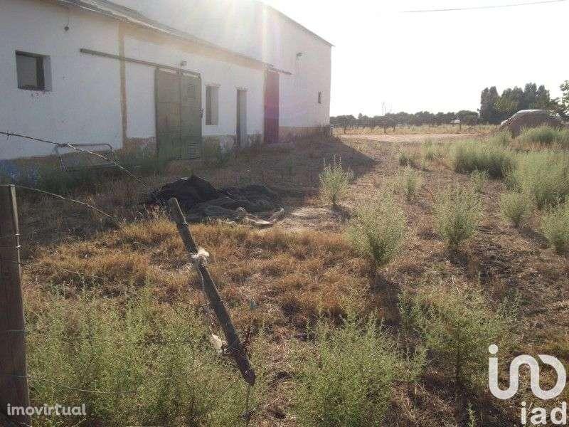 Terreno para comprar, Fronteira - Foto 15