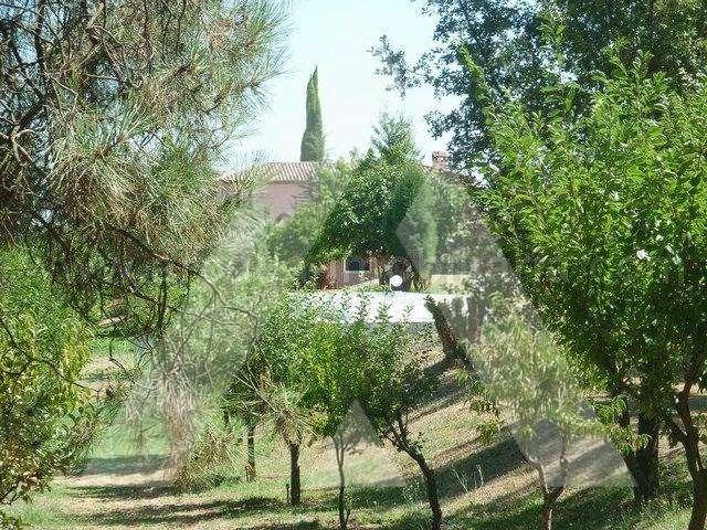 Quintas e herdades para comprar, Sangalhos, Anadia, Aveiro - Foto 12