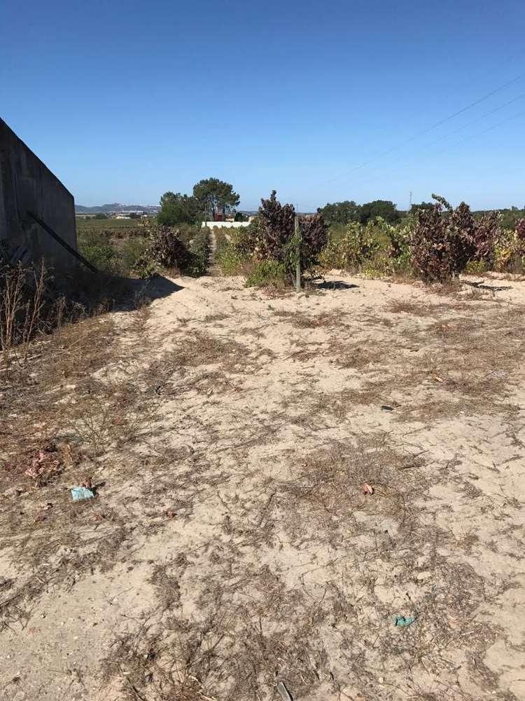 Terreno para comprar, Palmela - Foto 6