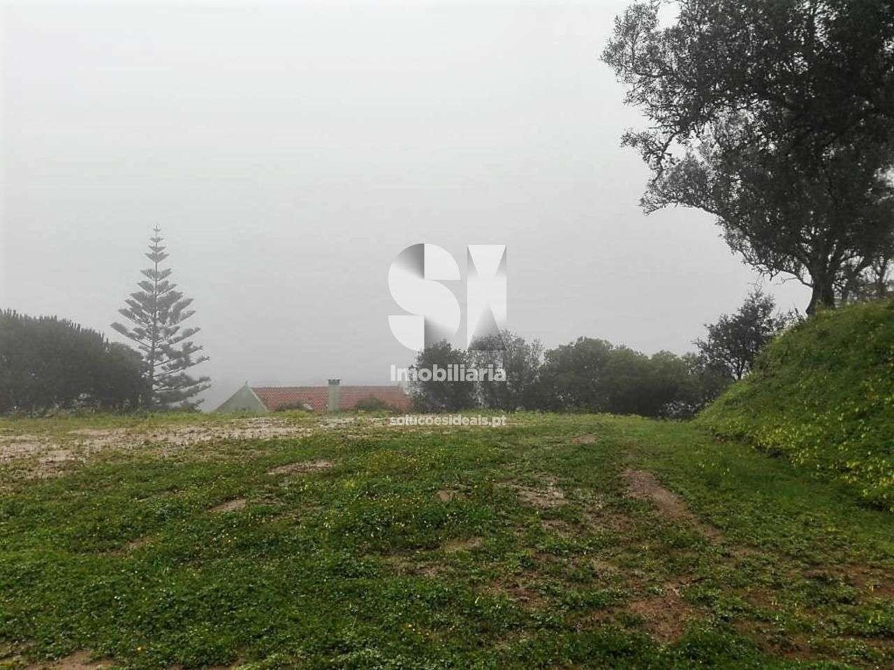 Terreno para comprar, Roliça, Bombarral, Leiria - Foto 1