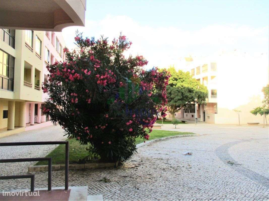 Apartamento para comprar, Cascais e Estoril, Cascais, Lisboa - Foto 25