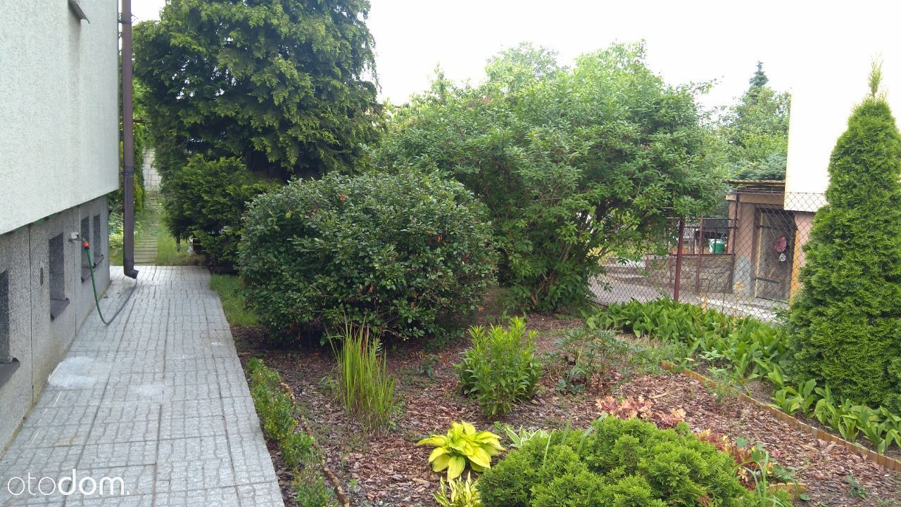 Parter domu z ogródkiem, osobna KW