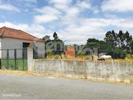 Quintas e herdades para comprar, Ereira e Lapa, Cartaxo, Santarém - Foto 1