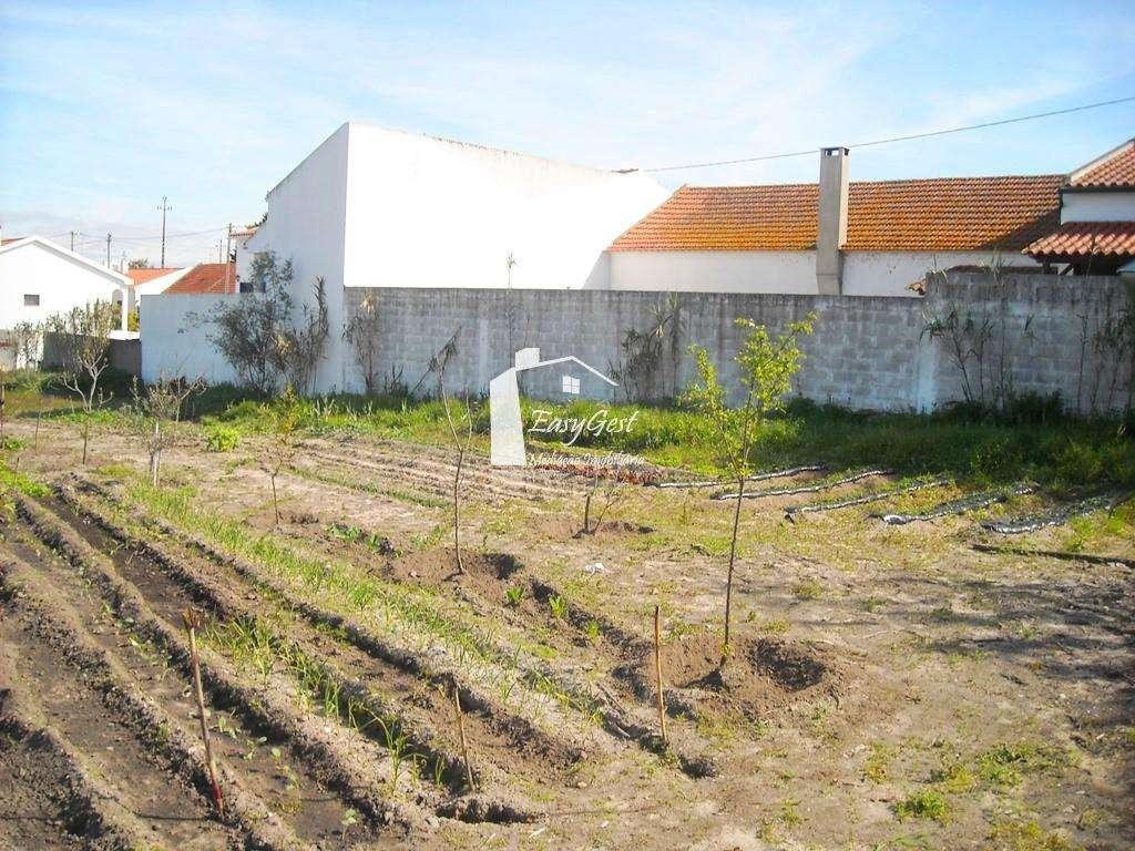 Terreno para comprar, Vale de Cavalos, Santarém - Foto 3