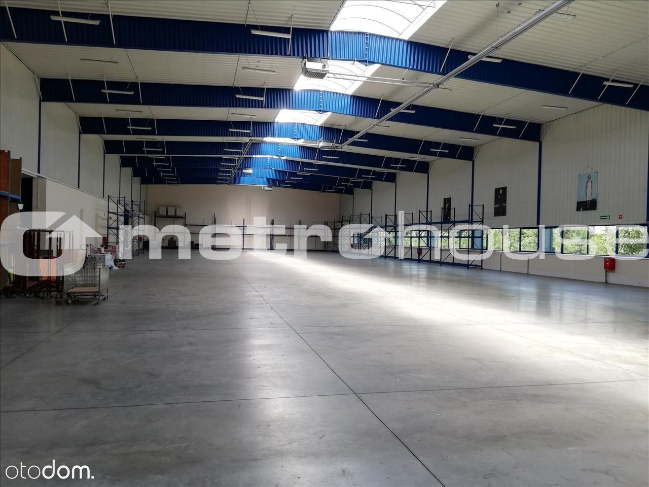 Lokal użytkowy, 2 000 m², Cedrowice-Parcela