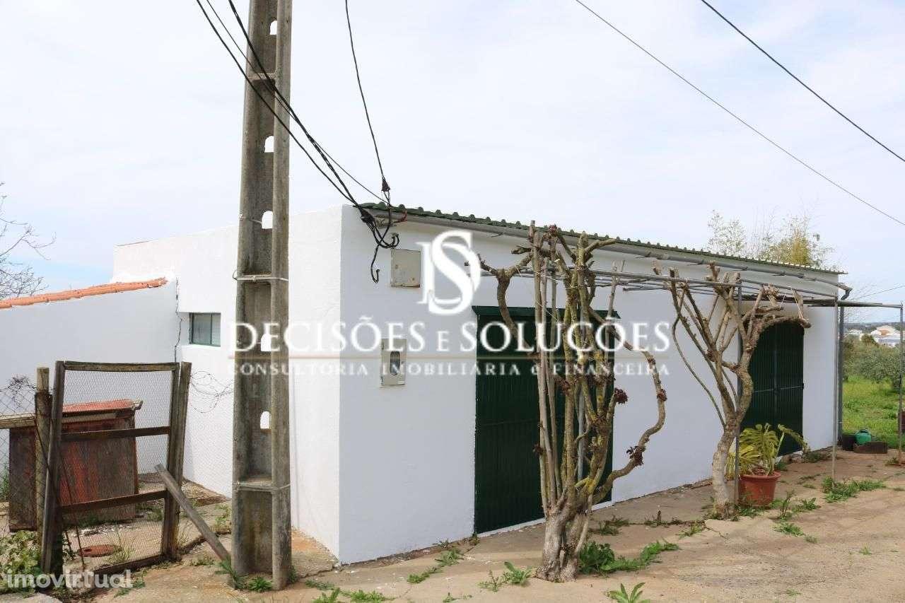 Quintas e herdades para comprar, Santiago do Cacém, Santa Cruz e São Bartolomeu da Serra, Santiago do Cacém, Setúbal - Foto 15