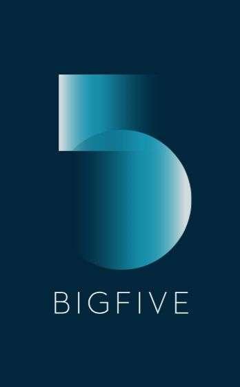 Big Five, Mediação Imobiliária, Lda