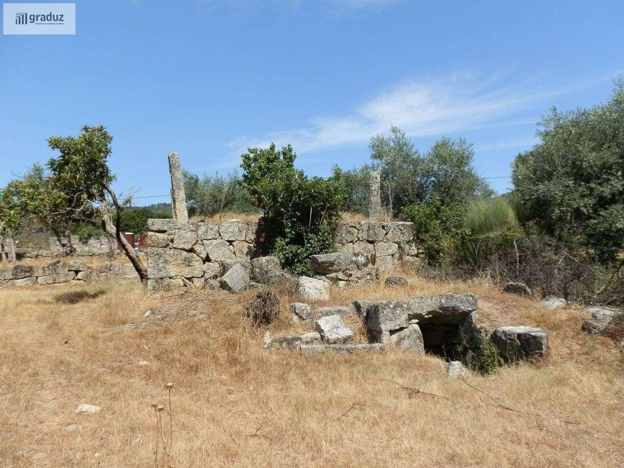 Quintas e herdades para comprar, Louriçal do Campo, Castelo Branco - Foto 25