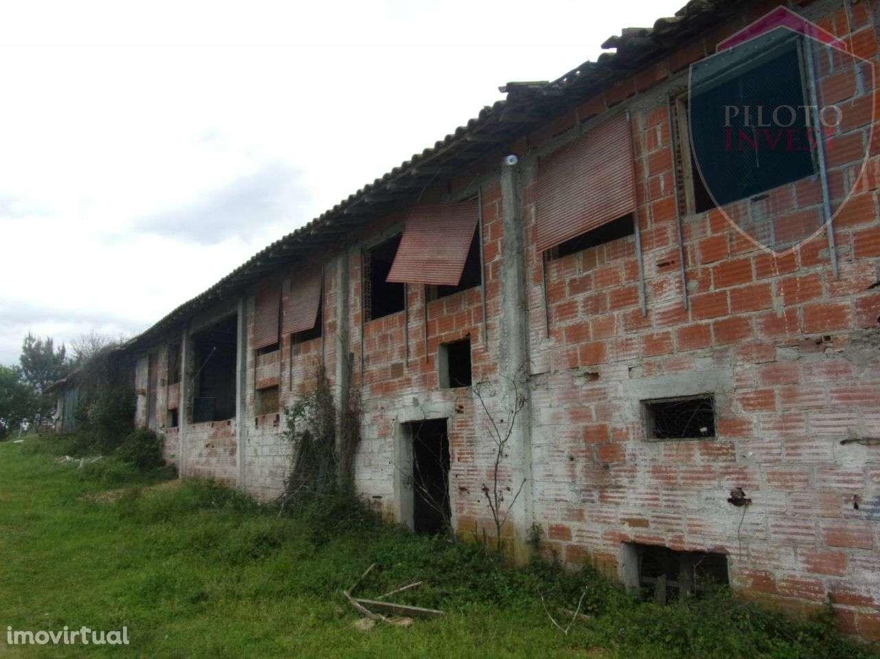 Quintas e herdades para comprar, São Miguel do Outeiro e Sabugosa, Viseu - Foto 14