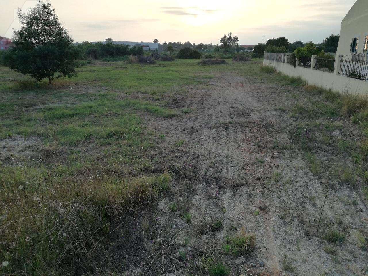 Terreno para comprar, Marinhais, Santarém - Foto 4