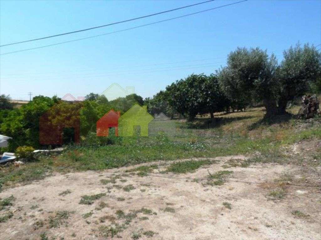 Quintas e herdades para comprar, Beringel, Beja - Foto 3