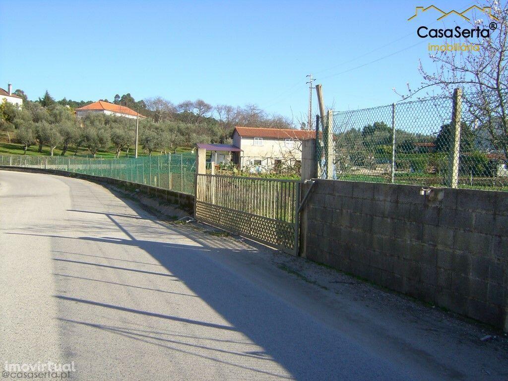Terreno para comprar, Carvalhal, Sertã, Castelo Branco - Foto 4