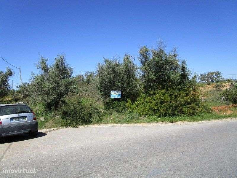 Quintas e herdades para comprar, Estômbar e Parchal, Faro - Foto 10