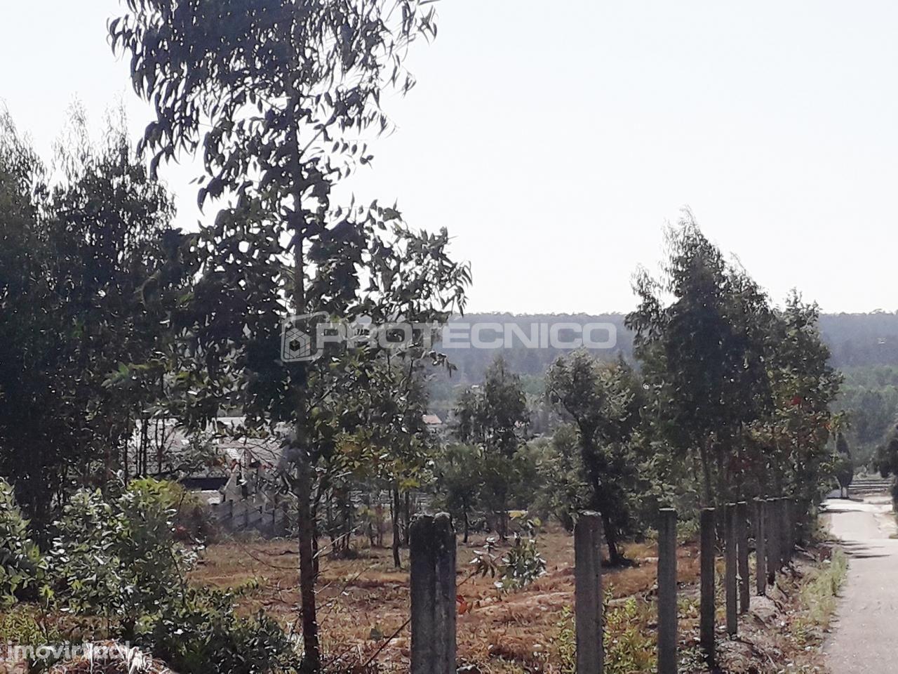 Terreno Industrial - Oliveira do Bairro