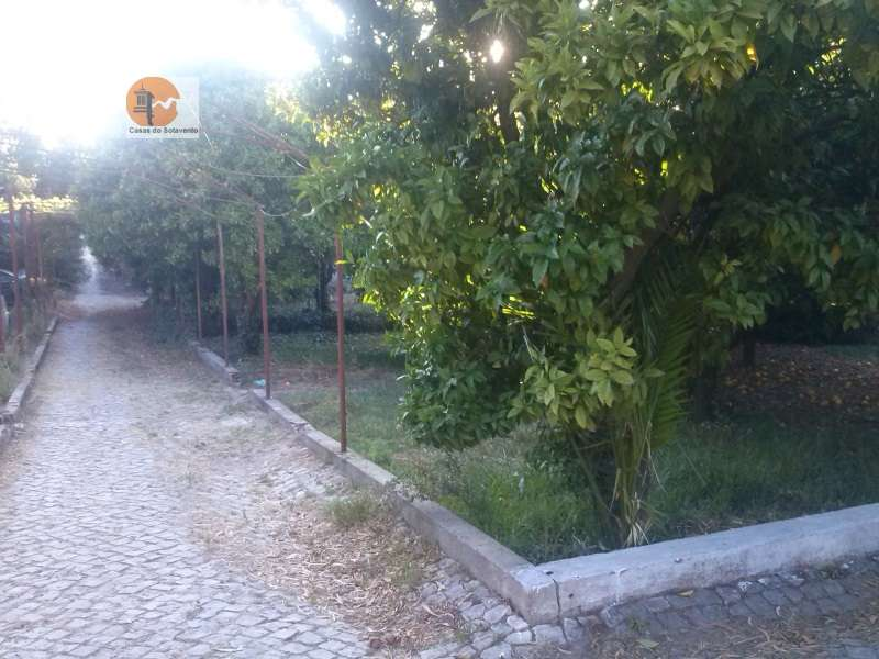 Quintas e herdades para comprar, Rua de Solmar - Quintinhas, Charneca de Caparica e Sobreda - Foto 53