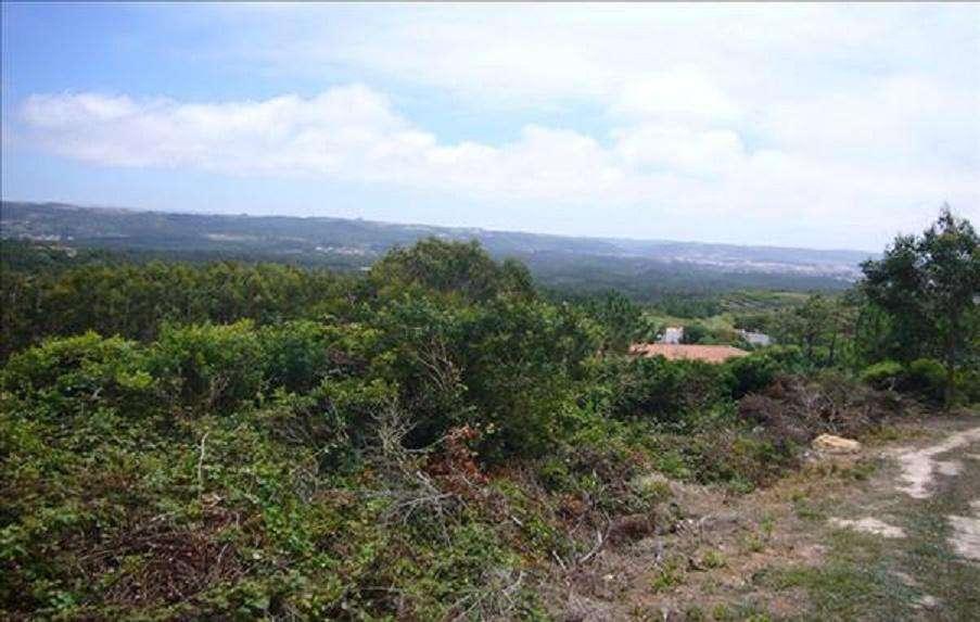 Terreno para comprar, Coz, Alpedriz e Montes, Leiria - Foto 2