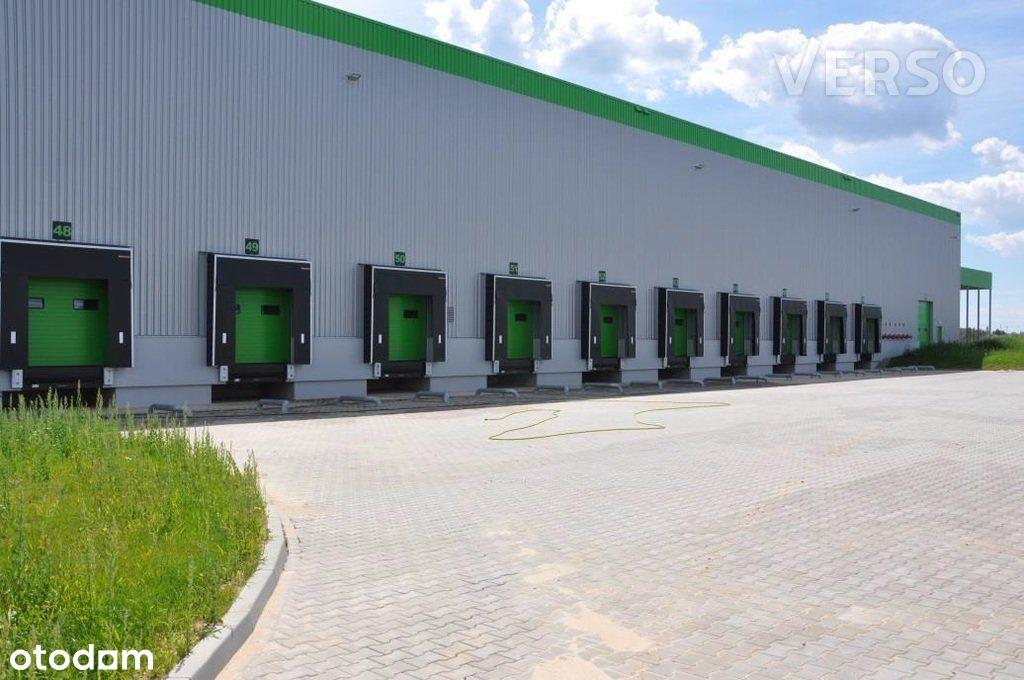 Magazyn/warehouse 5800 sqm. We speak english.