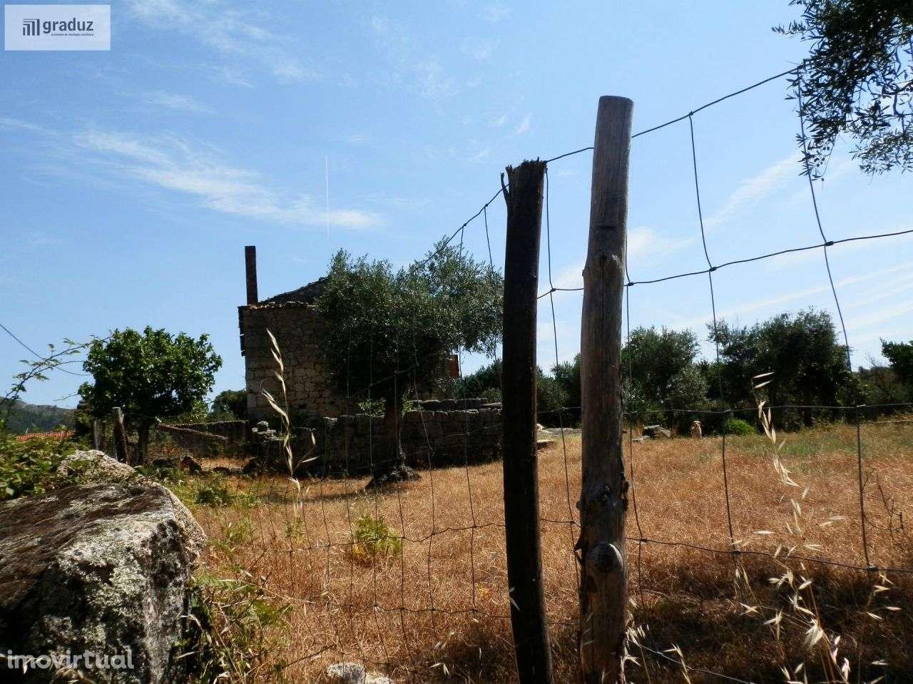 Quintas e herdades para comprar, Louriçal do Campo, Castelo Branco - Foto 8