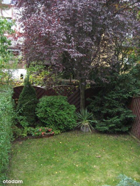 Złotniki- Park, zielona i cicha okolica