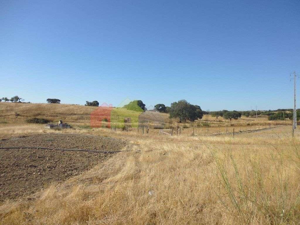 Quintas e herdades para comprar, Vila Verde de Ficalho, Beja - Foto 6
