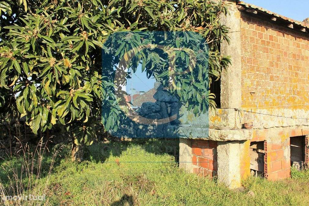 Quintas e herdades para comprar, Moreira, Viana do Castelo - Foto 10