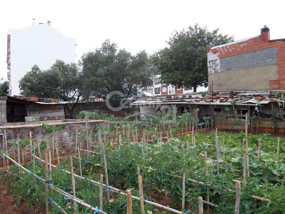 Quintas e herdades para comprar, Massamá e Monte Abraão, Lisboa - Foto 4