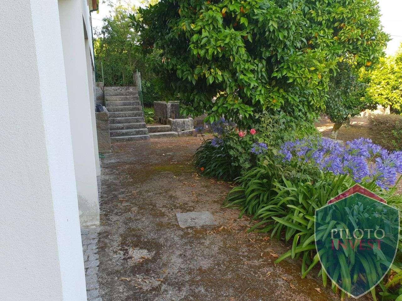Quintas e herdades para comprar, Povolide, Viseu - Foto 32