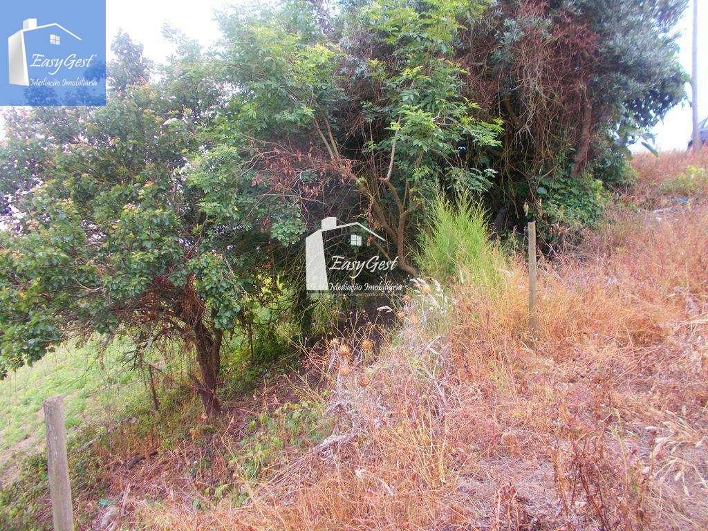 Terreno para comprar, Alvorninha, Leiria - Foto 7