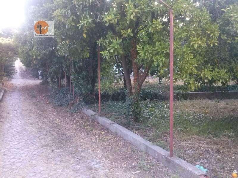 Quintas e herdades para comprar, Rua de Solmar - Quintinhas, Charneca de Caparica e Sobreda - Foto 57