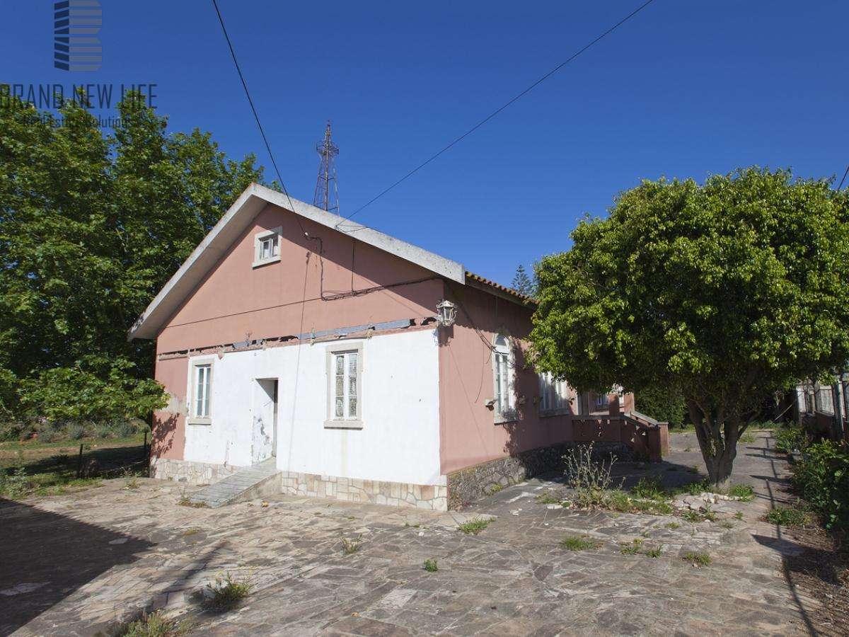 Quintas e herdades para comprar, Algueirão-Mem Martins, Lisboa - Foto 4