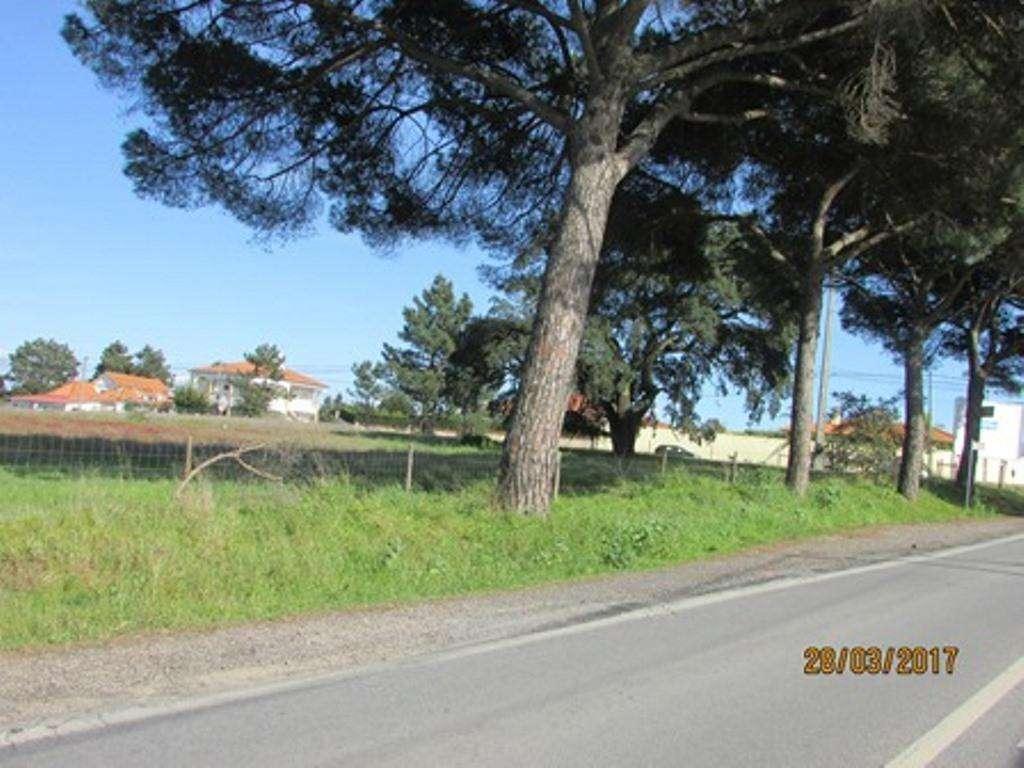 Terreno para comprar, Pinhal Novo, Setúbal - Foto 11