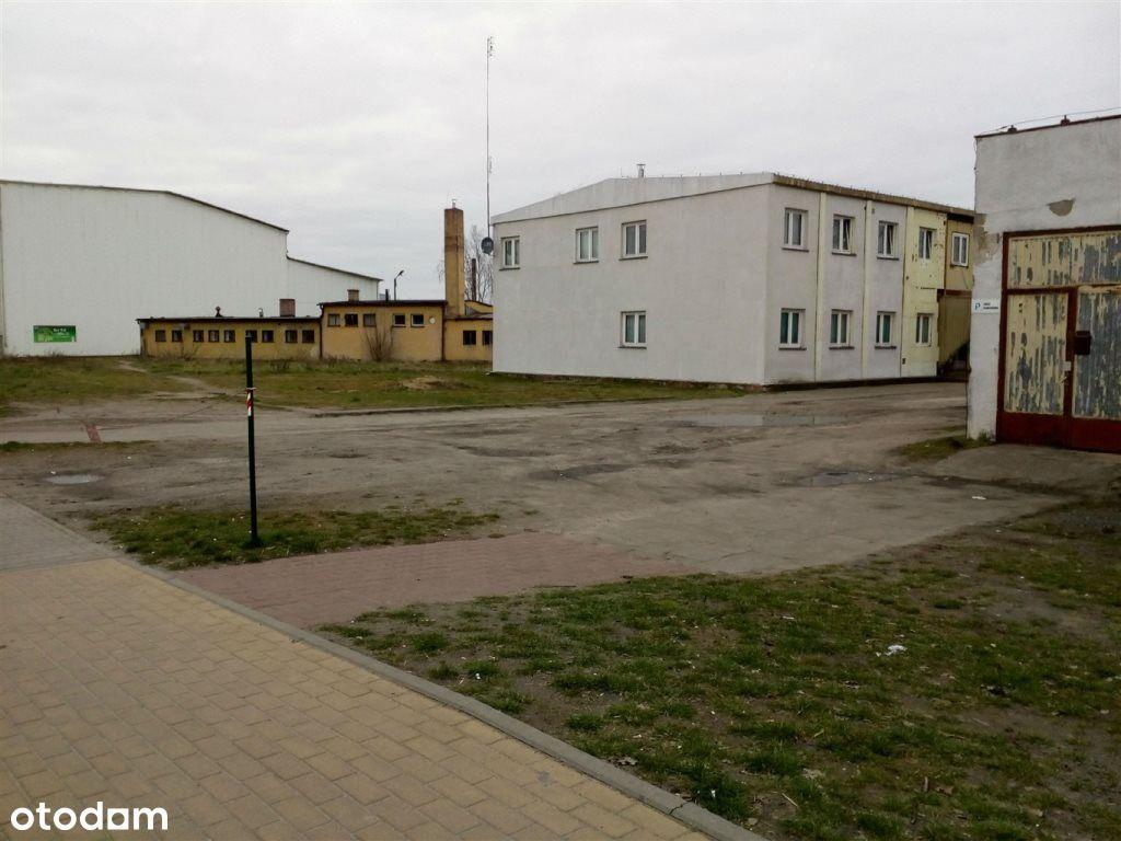 Działka, 1 168 m², Rogoźno
