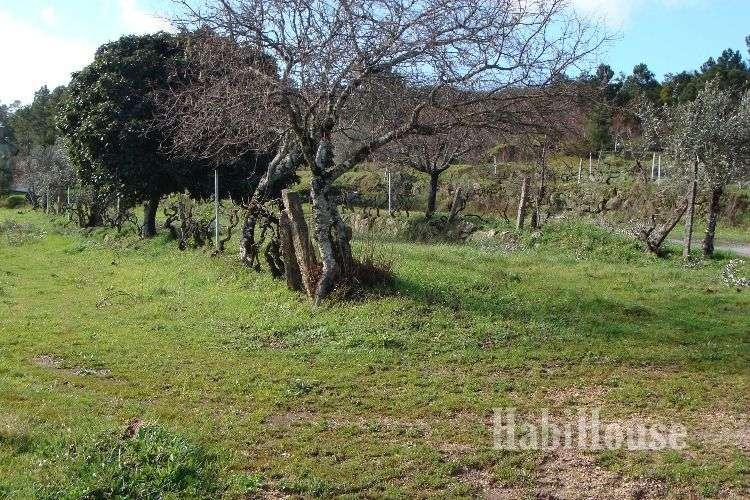 Quintas e herdades para comprar, Povolide, Viseu - Foto 11