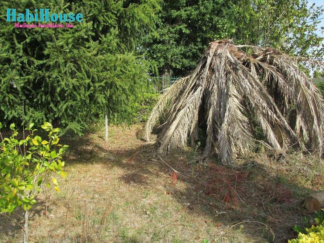 Quintas e herdades para comprar, Silgueiros, Viseu - Foto 4
