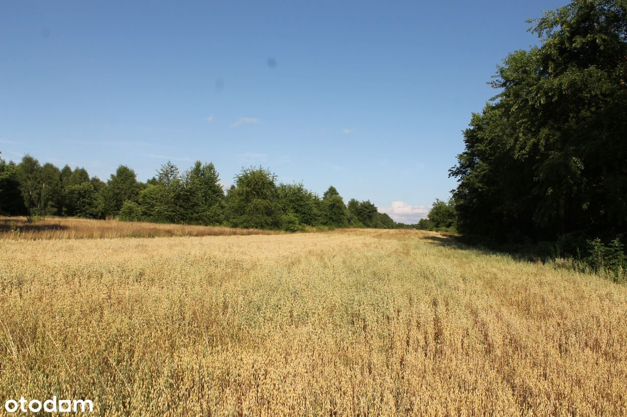 ŁAGIEWNIKI Nowe rolna pod zabudowę jednorodzinną