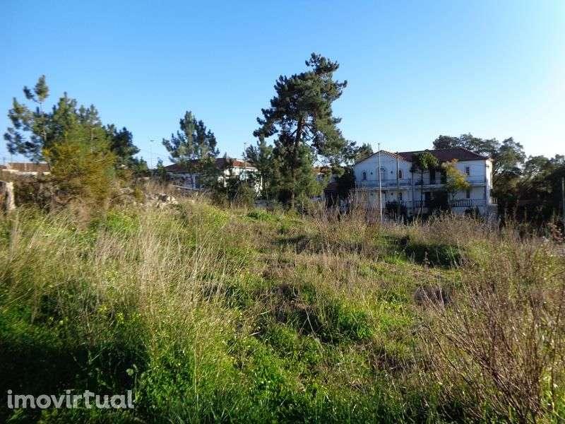 Terreno para comprar, Vale de Santarém, Santarém - Foto 8