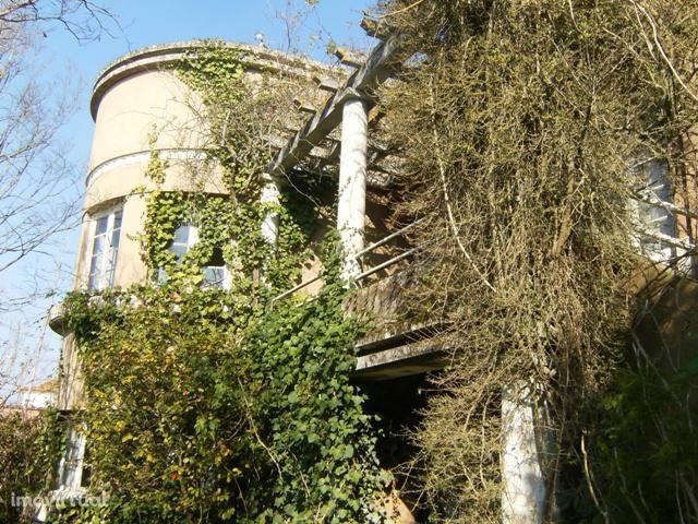 Quintas e herdades para comprar, Montemor-O-Velho e Gatões, Montemor-o-Velho, Coimbra - Foto 3