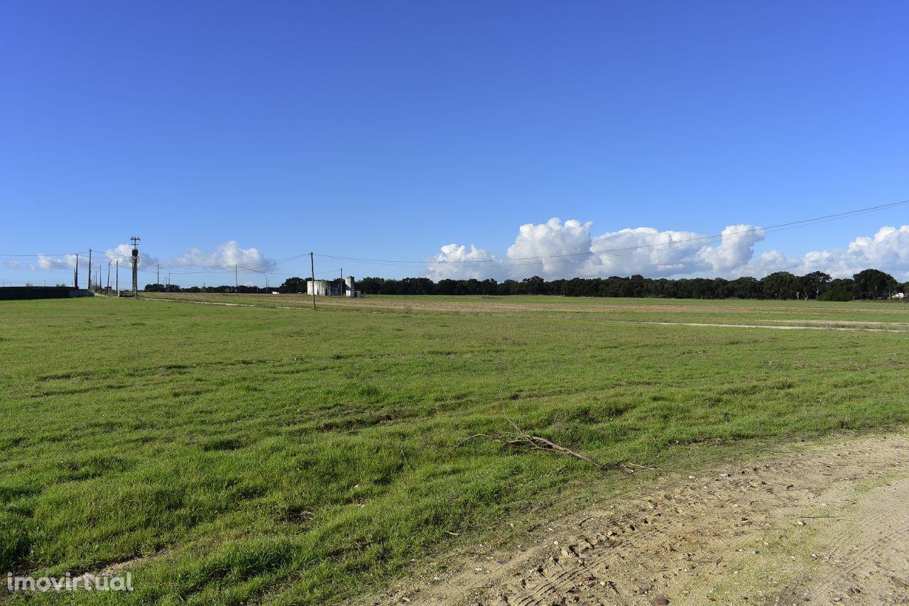 Terreno para comprar, Estrada Nacional 4, Atalaia e Alto Estanqueiro-Jardia - Foto 7
